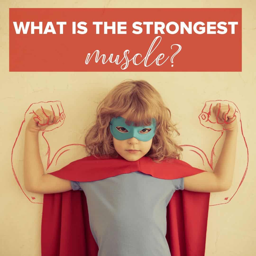 strong muscles on little girl